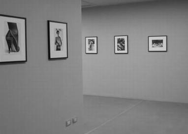 """L'Amure di Claudio Quarta per una """"introspezione enologica"""" sui sette vizi capitali, con la dinamica mostra fotografica di """"Ste La"""""""