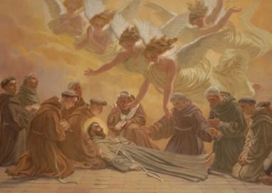 Fiori di Speranza di San Francesco