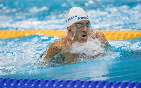 Paralimpiadi: nuoto, Morlacchi d'argento